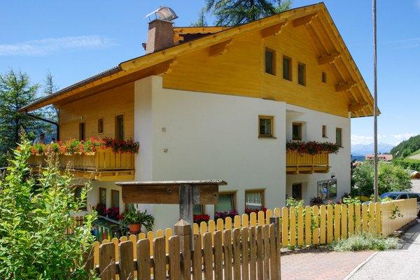 Foto estiva di presentazione Appartamenti Bergwald Mille Fiori