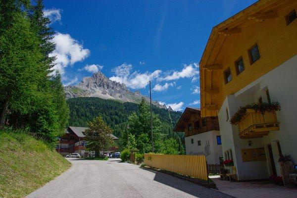 La posizione Appartamenti Bergwald Mille Fiori Obereggen