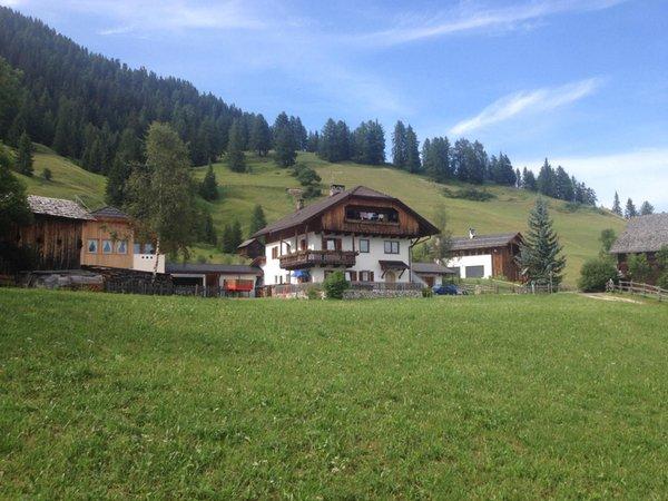 Sommer Präsentationsbild Ferienwohnungen auf dem Bauernhof Ciasa Pescol