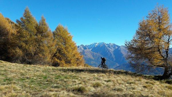 Sommer Präsentationsbild Danilo Martinelli - Mountainbike-Lehrer