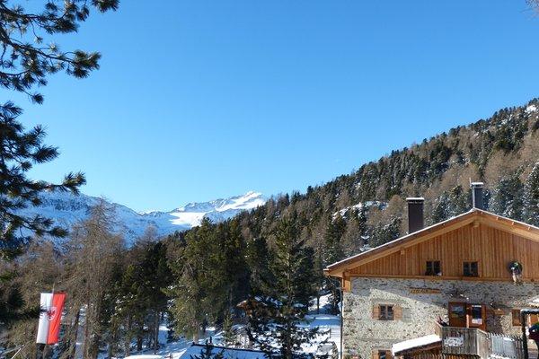 Foto Außenansicht im Winter Lyfi Alm
