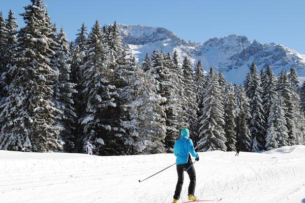 Foto invernale di presentazione Passo di Lavazè-Passo Oclini - Skiarea