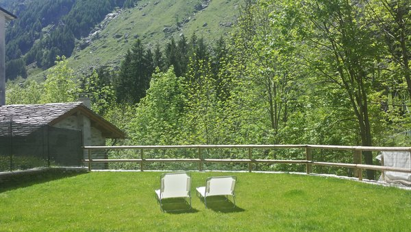 Photo of the garden Campodolcino (Valchiavenna)