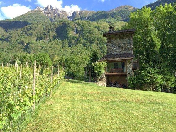 Foto esterno in estate Torre Scilano