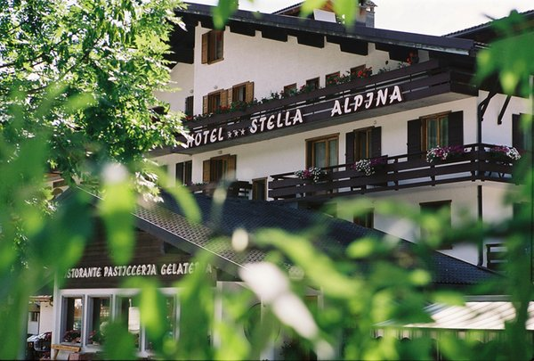 Photo exteriors in summer Stella Alpina