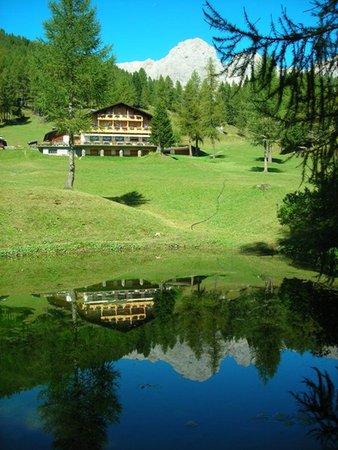 La posizione Rifugio con camere Flora Alpina Falcade