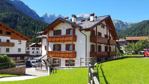 Foto estiva di presentazione Villa Elisa - Appartamenti seconda categoria