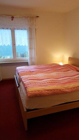 Photo of the room Apartments Scardanzan Loredana