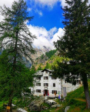 Sommer Präsentationsbild Berghütte mit Zimmern Alpe Musella