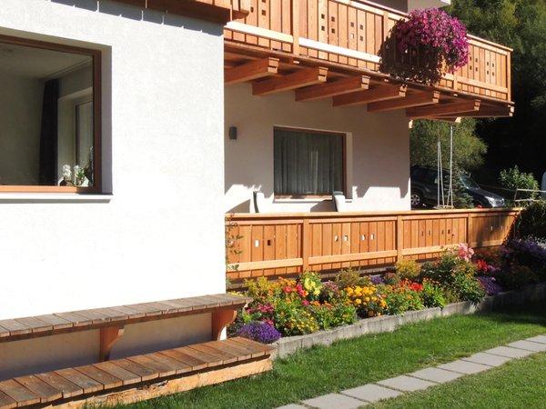 Foto esterno in estate Brunello