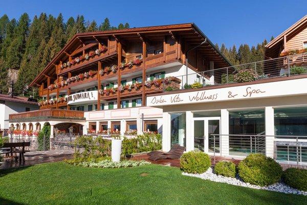 Foto estiva di presentazione Hotel Sayonara