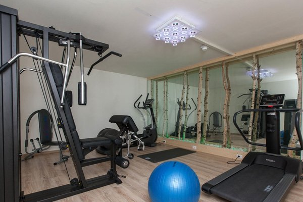 Foto della zona fitness Hotel Europa