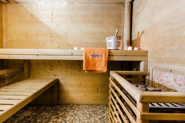 Foto della sauna Transacqua