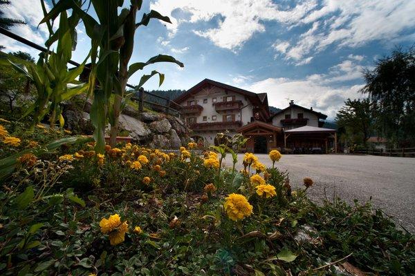 Photo exteriors in summer El Mondin