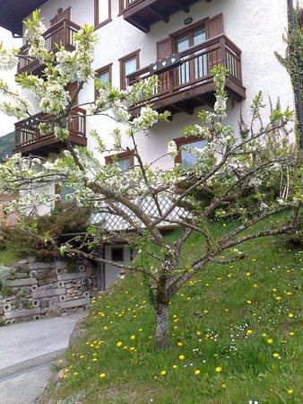 Sommer Präsentationsbild Hotel Cima d'Asta