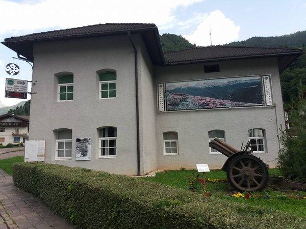Gallery Valle del Vanoi estate