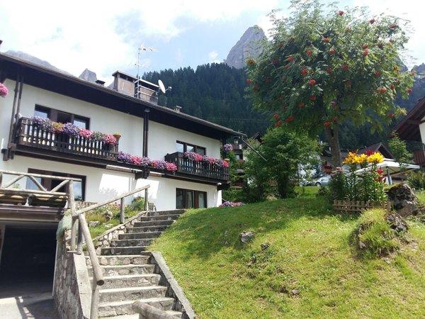 Foto esterno in estate Bonelli Mariuccia