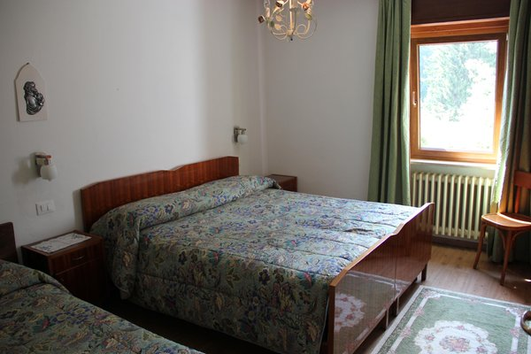 Photo of the room Apartments Casa da Elda