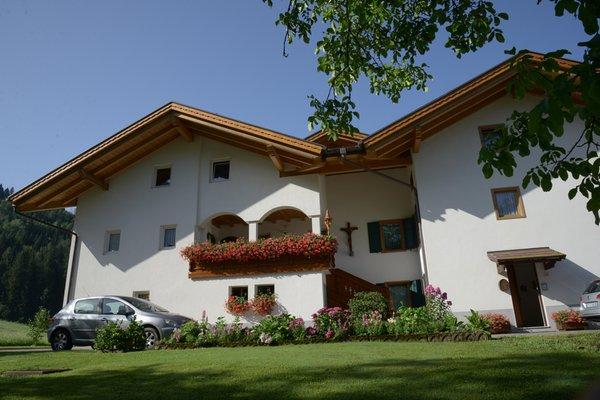Foto esterno in estate Famiglia Trotter