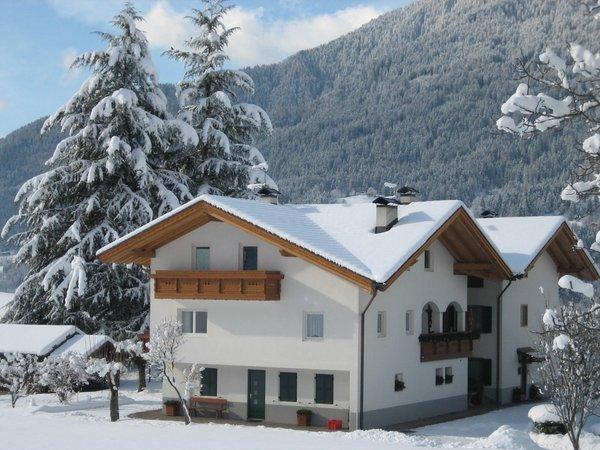 Foto invernale di presentazione Famiglia Trotter - Appartamenti 3 genziane