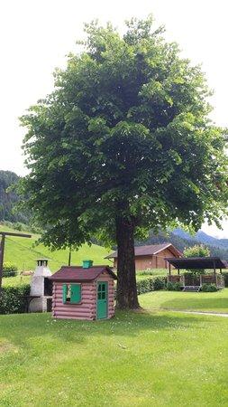 Photo of the garden Transacqua (Primiero)