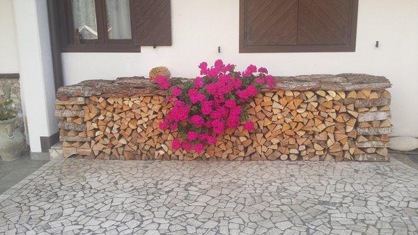 Lucian Maria 46 - Appartamenti 3 genziane Transacqua (Primiero)