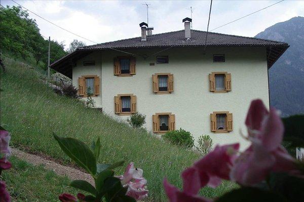 Foto estiva di presentazione Appartamento Stefani Gabriella