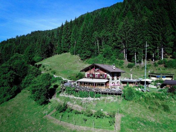 La posizione Baita Zeni Tiroler Hof Transacqua (Primiero)