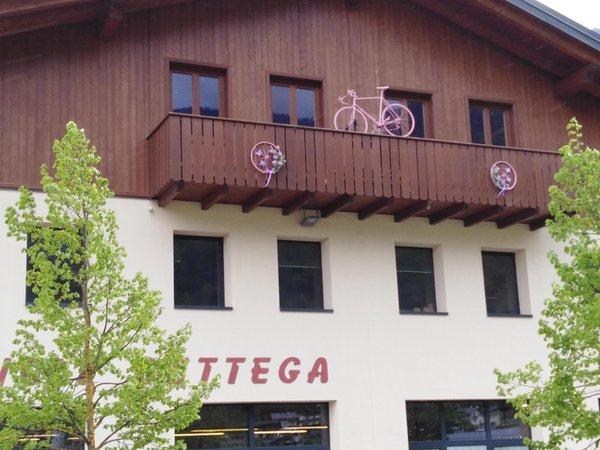 Foto esterno in estate Cicli Bettega