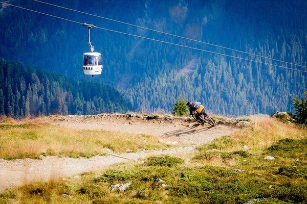 Sommeraktivitäten Primiero-Tal