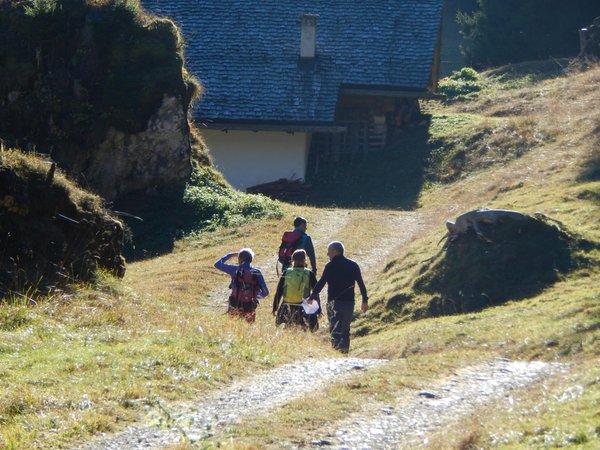 Attività Dolomiti Adventure
