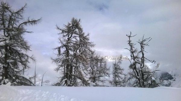 Gallery inverno
