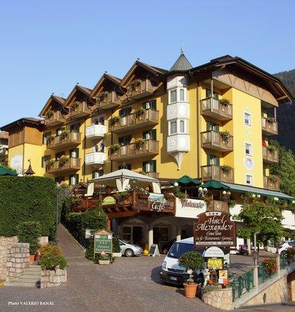 Foto estiva di presentazione Hotel Alexander