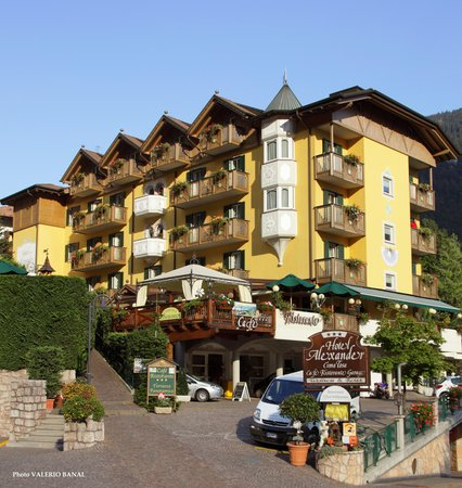 Foto estiva di presentazione Alexander - Hotel 3 stelle sup.