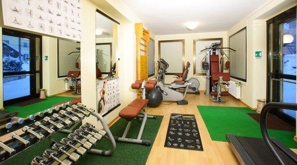 Foto della zona fitness Hotel + Residence Alexander
