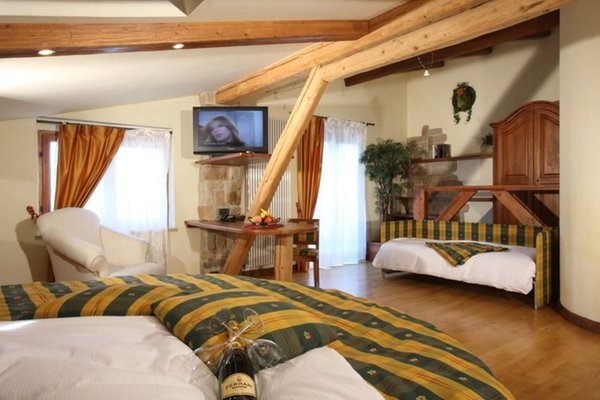 Photo of the room Hotel Garden