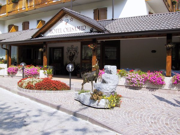 Photo exteriors in summer Olisamir
