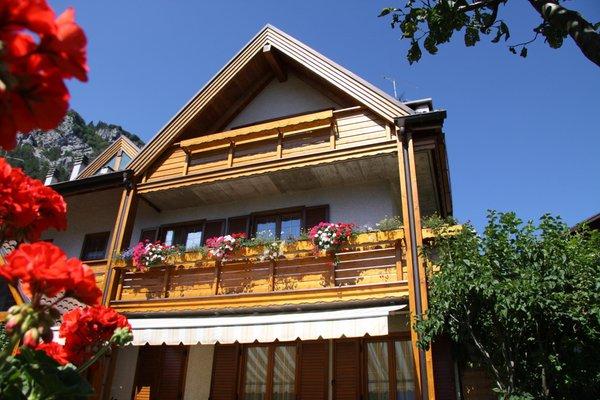 Foto estiva di presentazione Casa Bellavista - Appartamenti 4 genziane