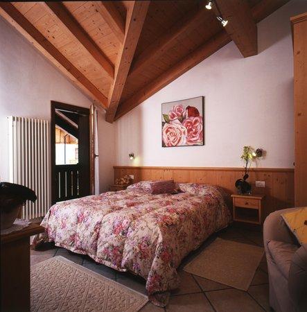 Photo of the room Apartments Bazzanella