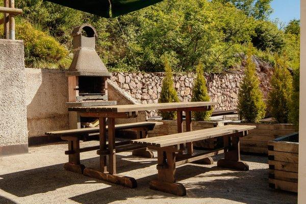 Photo of the garden Andalo