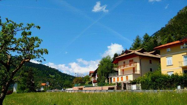 Foto estiva di presentazione Appartamenti Casa Adamello