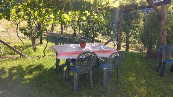 Photo of the garden Cavedago