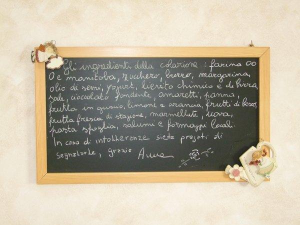 Photo of some details Primavera