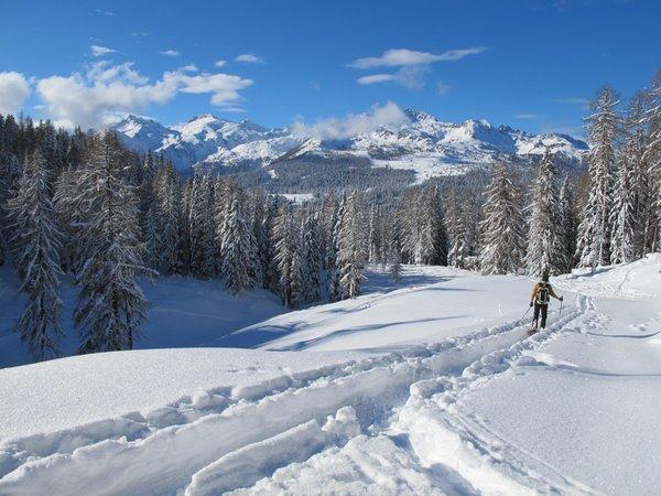 Winter presentation photo Mountain guides Adamello Dolomiti di Brenta