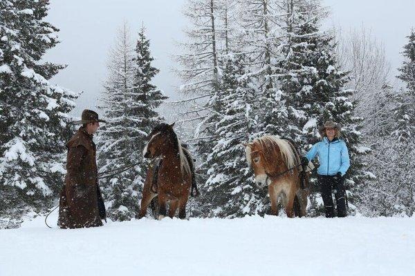 Attività invernali Folgaria e dintorni