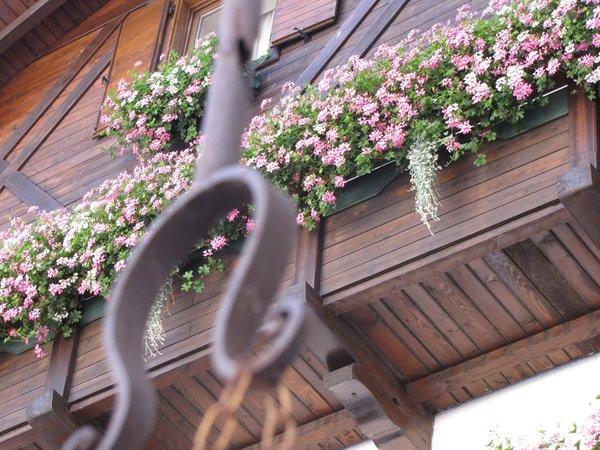 Foto di alcuni dettagli Club Hotel Alpino