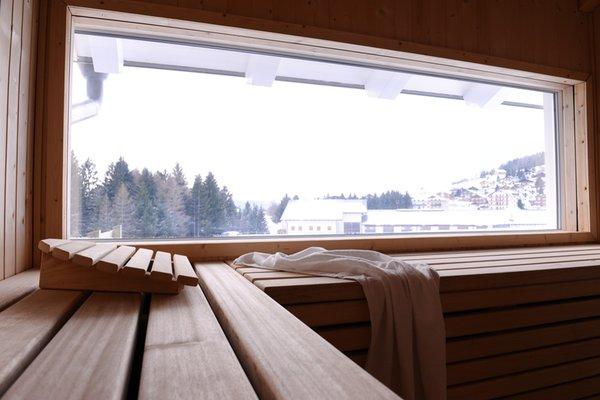 Foto della sauna Costa