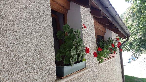 Foto esterno in estate Schiavi Angelica