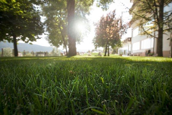 Foto del giardino Costa (Folgaria)
