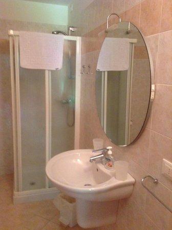 Foto del bagno Camere + Appartamenti in agriturismo La Decima